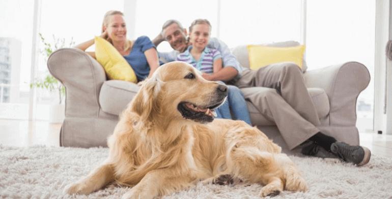 Изображение семья и друзья как основной приоритет